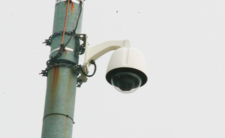 red light camera essay When columbus city officials began discussing expansion of the city's red-light-camera program in 2008, mayor michael b coleman's chief of staff didn't.