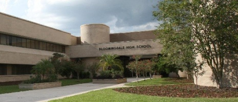 Bloomingdale resize