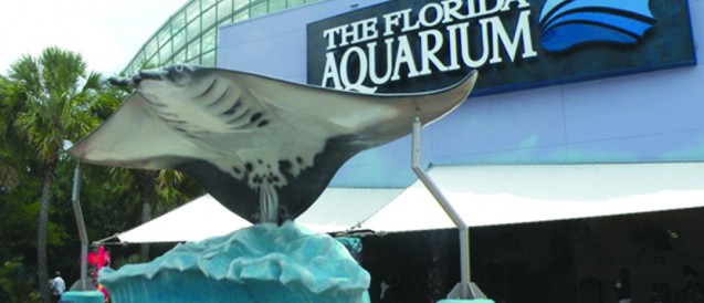 Florida Aquarium Partners With New Conservation Park At Viewing Center