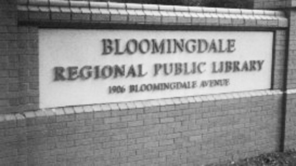 County Begins Year-Long Bloomingdale Regional Public Library Expansion Project