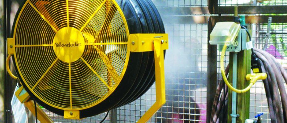 Yellow Jacket Fan