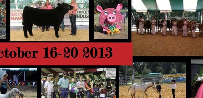 20th Annual Hillsborough County Fair Offers New Exhibition