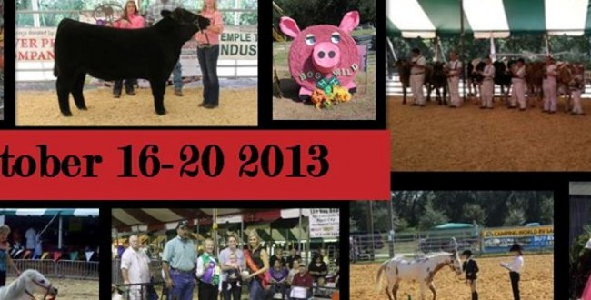 hillsborough county fair
