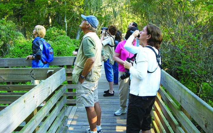 First Bird Walk Of Season Scheduled At Medard Park