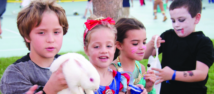 Apollo Beach Elementary Fall Festival Will Be A Spooky Good Time