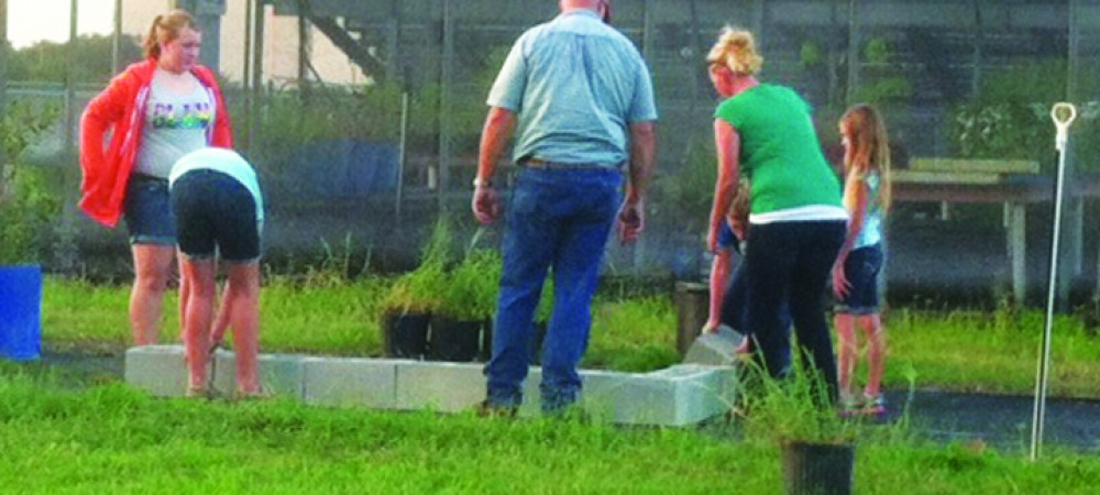 Raised garden at Riverview High school