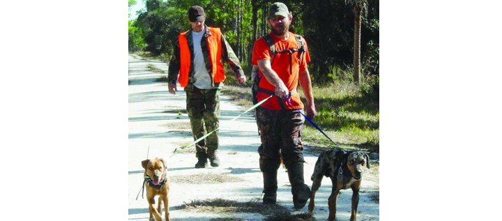 District To Hold Series Of Hog Hunts In 2013-2014, Permits Will Be Available Online