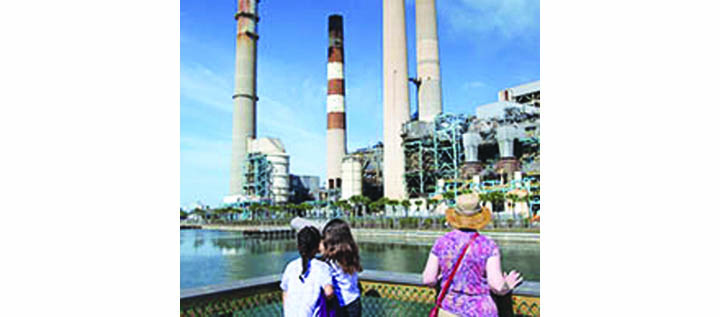 TECO Power Plant Provides View Of Manatee And Coastal Wildlife