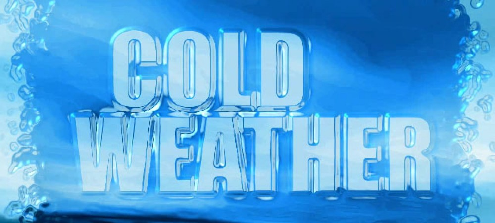 Hillsborough County To Open Emergency Cold Weather Shelters As Record Low Temperatures Reach Florida