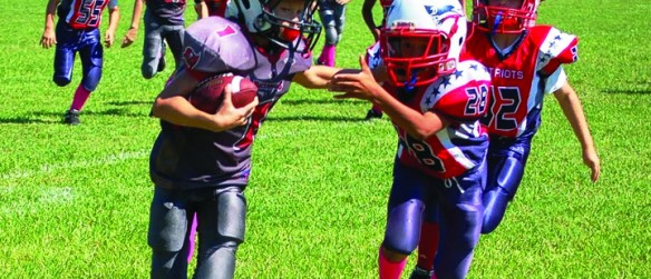 Newland Communities Repairs Riverview-Area Youth Sports Field