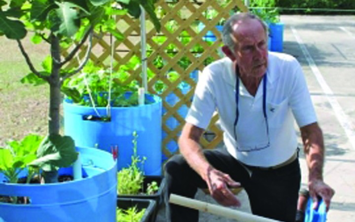 Master Gardener Teaches Organic Gardening At Bloomingdale Regional Library