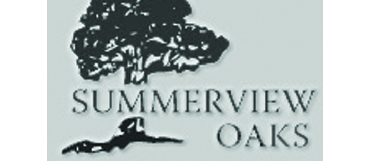 Summerview Oaks Seeks Donations For Playground