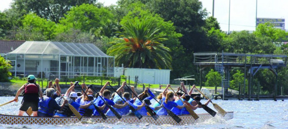 Mira Bay Has Dragon Boat Paddling Club