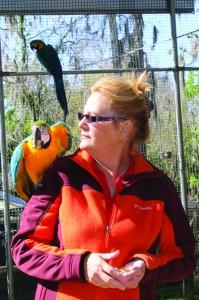 Bird Sanctuary_1-Patricia2