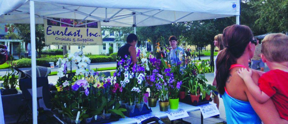 HOA Hot Topics Orchids by Everlast market day FishHawk Ranch