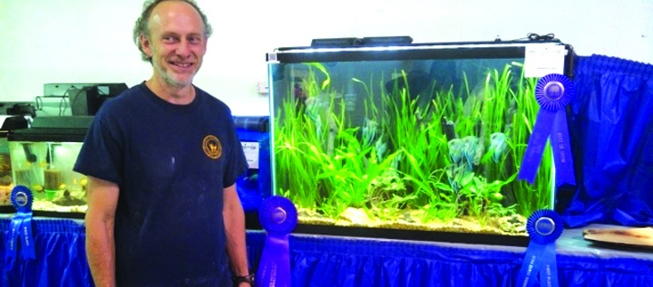 Tampa Bay Aquarium Society Fish For New Members