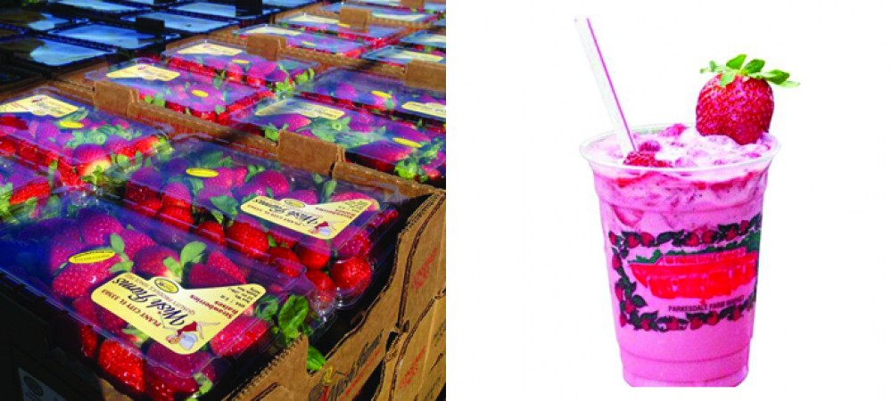 Time For Strawberry U-Picks, Fresh Produce Stands & More