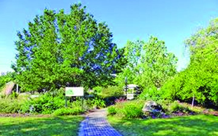 MOSI Historic Tree Grove Enhancements Made Possible By CountyGrant