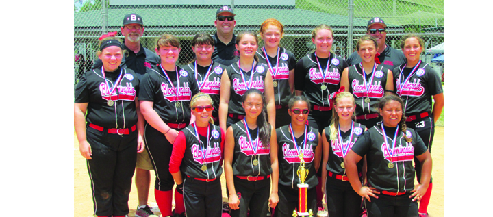 Bloomingdale Blaze 12U Softball Wins State, Ready For World Series