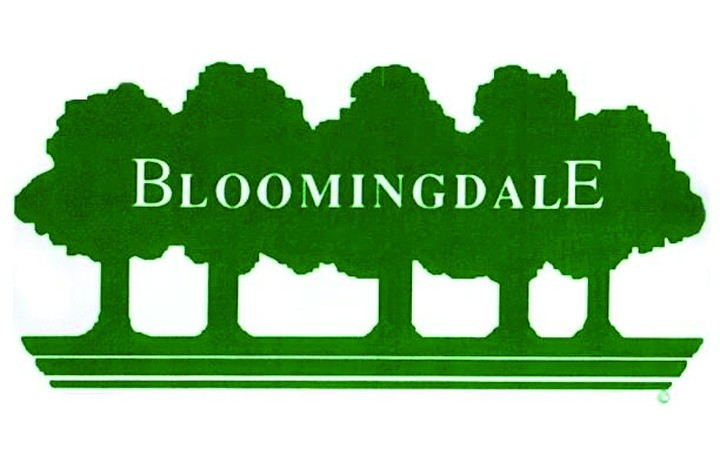 Bloomingdale Residents Enjoy Free Yoga & More