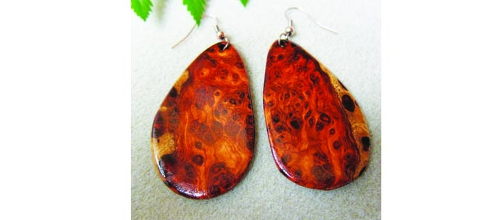 Brandon Couple Transforms Exotic Wood Into Jewelry