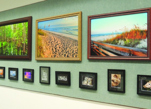Susan Overbo's Photographs Of Florida On Display At The Bruton Memorial Library