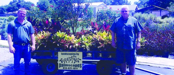 Palmscapes Provides One-Stop Shop For Landscaping Needs