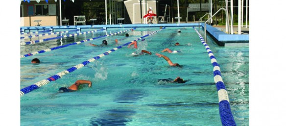 Hillsborough County Commission Invests $800K in BSAC Program Improvements