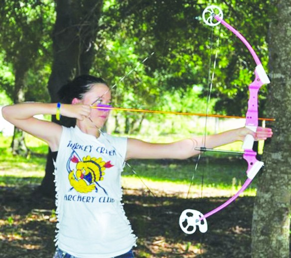 Archers Take A Shot In Statewide Tournaments