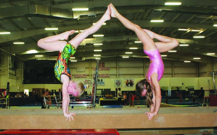Gymnasts Get National Recognition, Newsome Ice Wolves Train at Local Gym & More