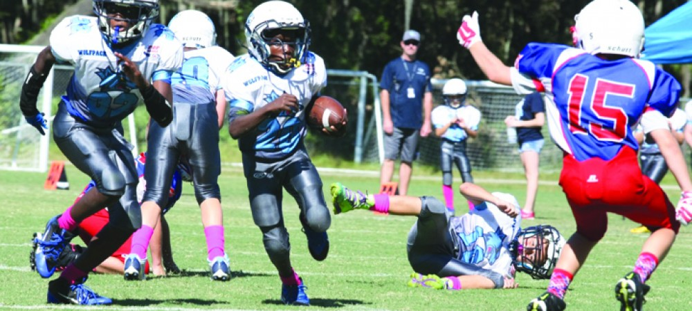 FishHawk Wolfpack Junior Pee-Wee Wins First Round of Division 2 Playoffs