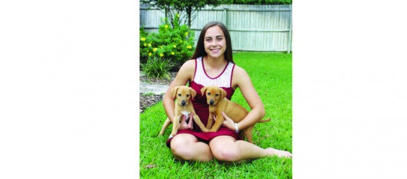 Florida All Retriever Rescue: Making A Difference One Puppy At A Time