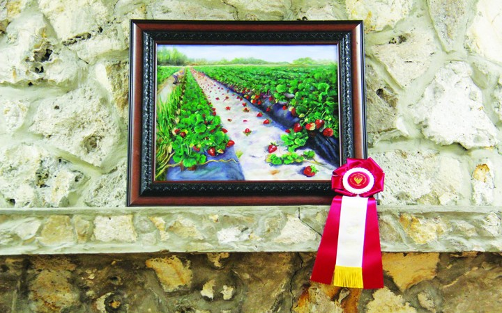 Art Show Seeks Business Leader's Choice Award Sponsors