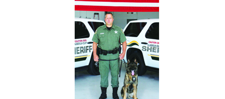 Hillsborough County Sheriff's Office K9s Make Headlines