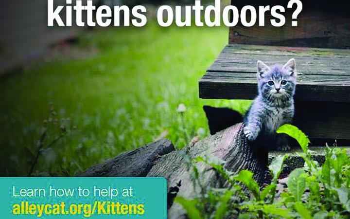Pet Resource Center UnveilsWait Until 8 Program