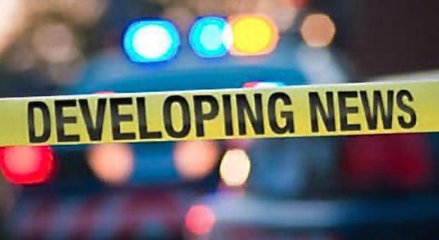 "Detectives Seek Public Assistance in Recent FishHawk ""Car Hopping"" Case"