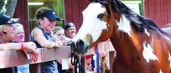 RVR Horse Rescue Wins $5K Grant From ASPCA