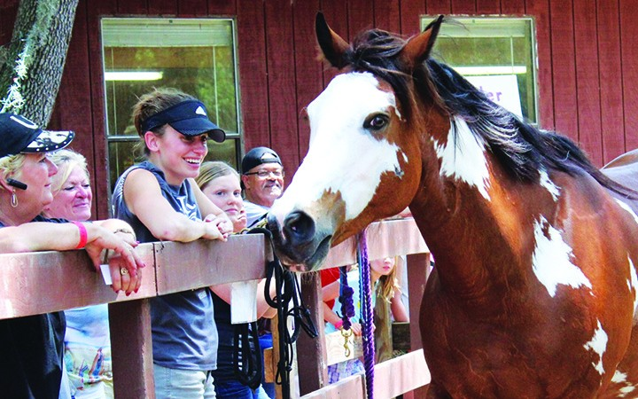RVR Horse Rescue Wins $5K Grant From ASPCA