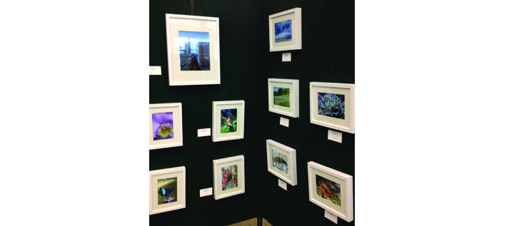 SouthShore Regional Library Presents  Annual i-Phone Exhibit