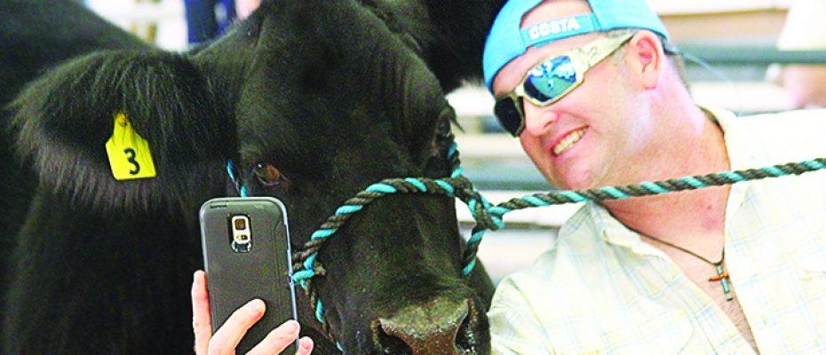 Annual Hillsborough County Fair Themed Blue Jeans & Country Dreams