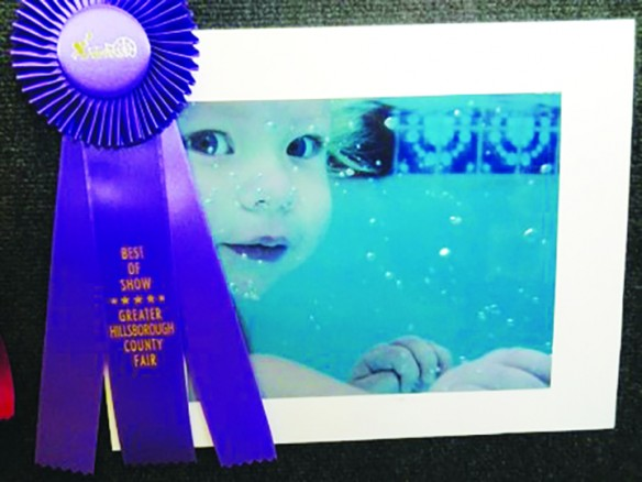2015 Hillsborough County Fair Photography/Mixed Media Photography Competition Seeks Entrants