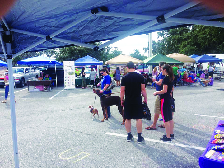 Annual Healthy Pet Fest Continues Tradition Of Holistic Goods, On-Site Pet Adoptions