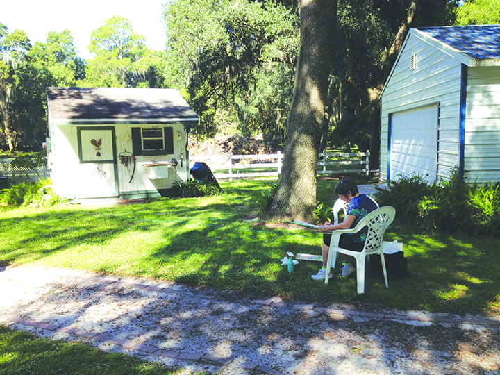 Artists Paint Plein Air At The Palmer House Bed And Breakfast In Lithia
