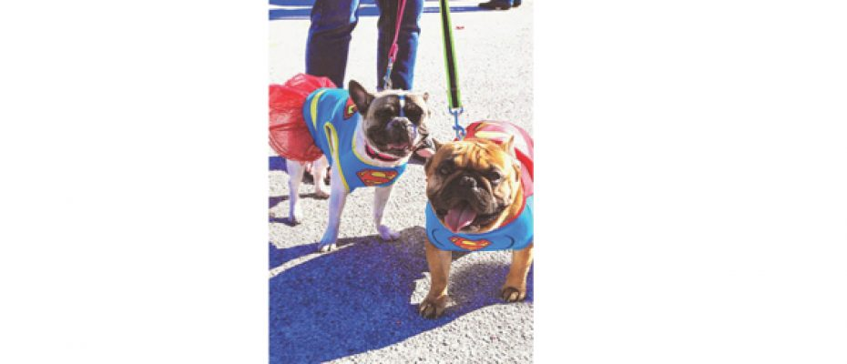 27th Annual Trick-or-Treat Street Anticipates Thousands Of Attendees