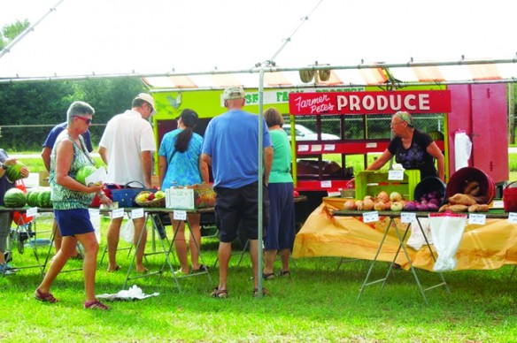 Support Charity At Balm Farmers' Market