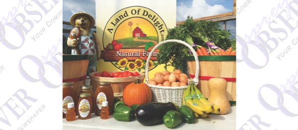 A Land Of Delight Hosts Monthly Farmers' Market In Plant City