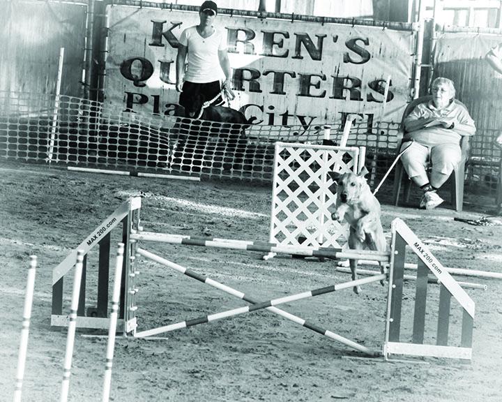 Host Events At Koren's Quarters Ranch