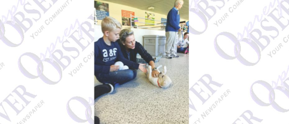 Southeastern Guide Dogs Provide Mobility, Independence To Visually Impared