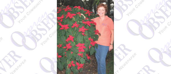 December: Get The Dirt With Florida Yard Expert Lynn Barber