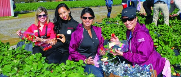Third Annual Bright House Networks Strawberry Picking Challenge To Benefit RCMA